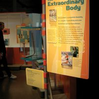 body works exhibit