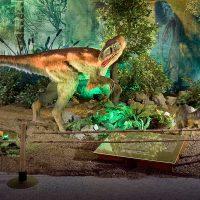 travelling dinosaur exhibit